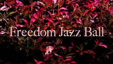 FREEDOM JAZZ BALL